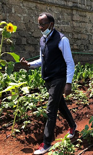 hero-kenya-agribusiness-4.jpg