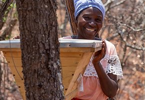 Luangwa-Community-Forests-Project-1.jpg