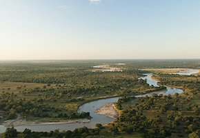Luangwa-Community-Forests-Project-2.jpg