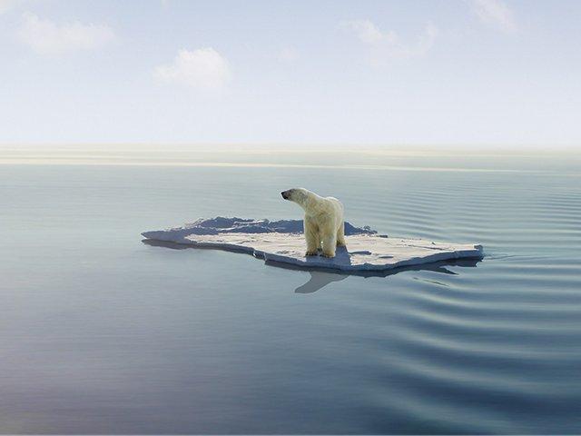 Cambiamento climatico: cause, effetti e soluzioni   Eni