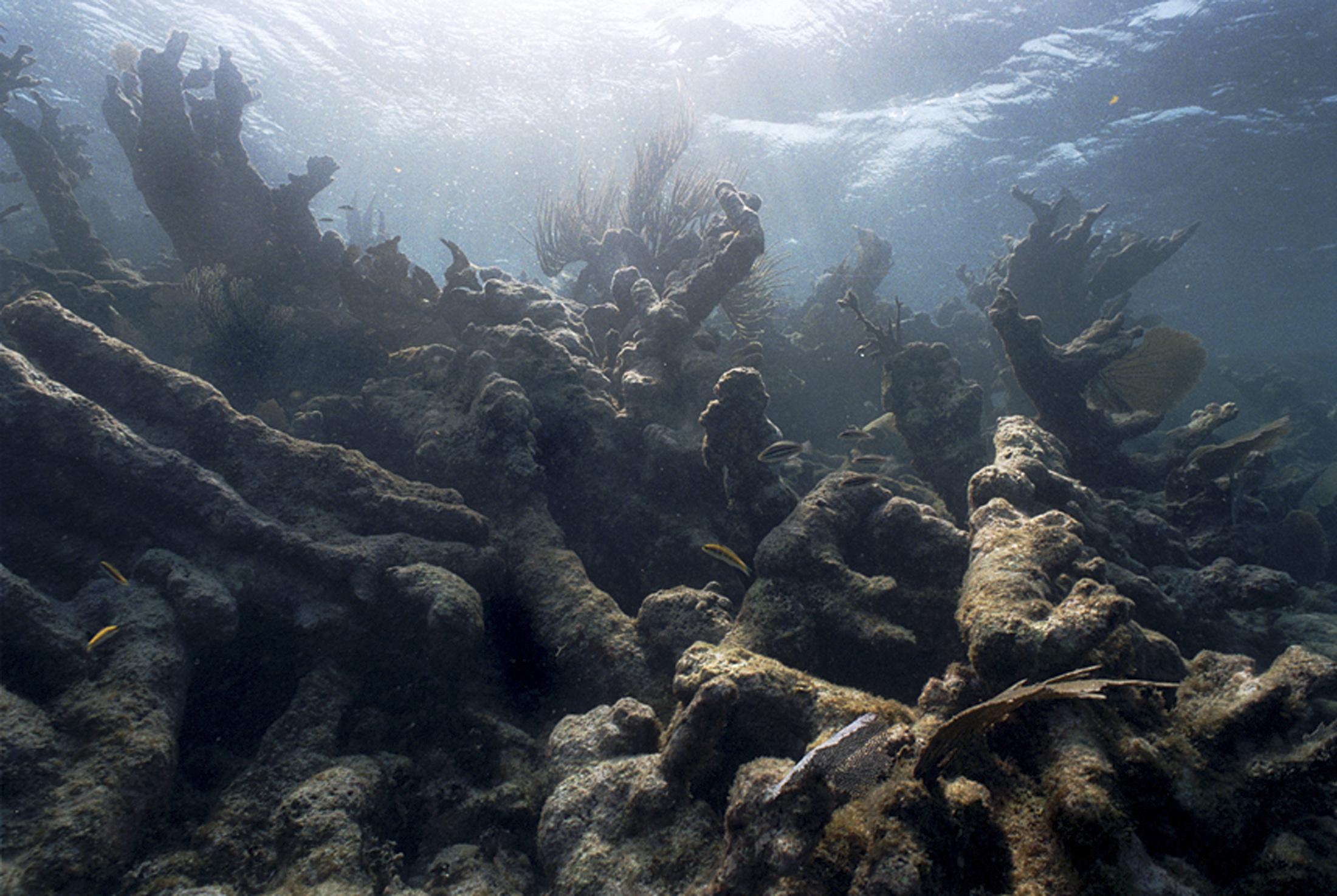 Il cambiamento climatico nel Mediterraneo