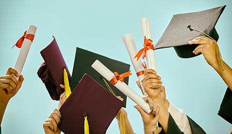 Aree professionali, lauree e diploma richiesti