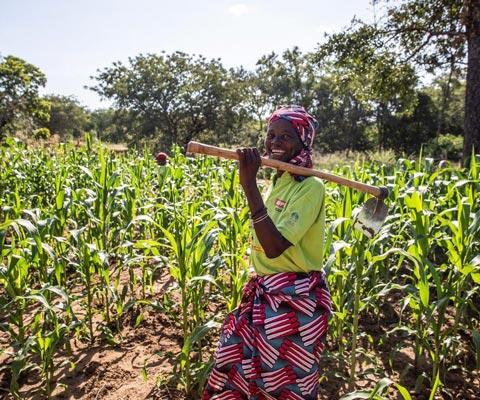 Donne rurali e alimentazione: le giornate internazionali