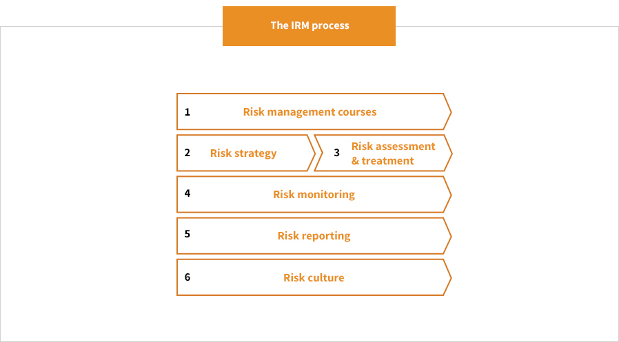 Integrated Risk Management process