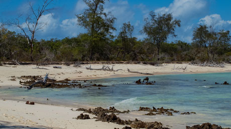 Community Development and Biodiversity Protection in Vamizi island