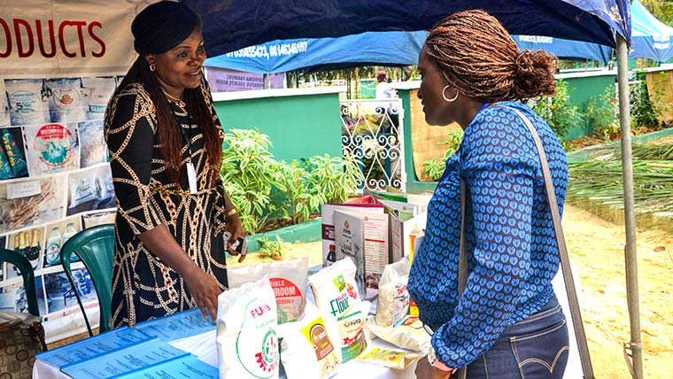Farm village re-creation, agro processing entrepreneur exhibition stand