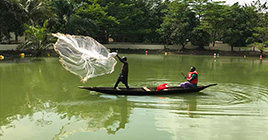 Fisherman demonstration in earth ponds