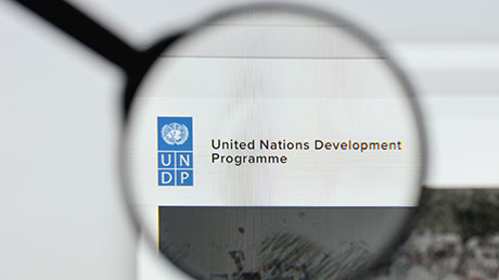 What is the United Nations Development Programme (UNDP)?