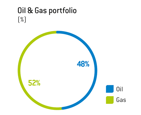 Share of gas